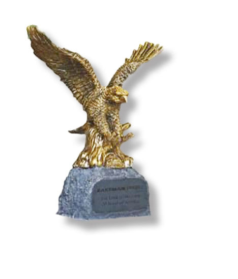 Picture of Metallic Eagle and Stone Award