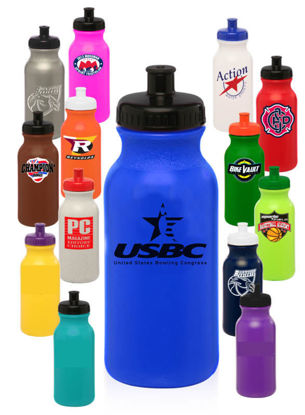 Picture of 20 Oz. Water Bottle (National Logo)